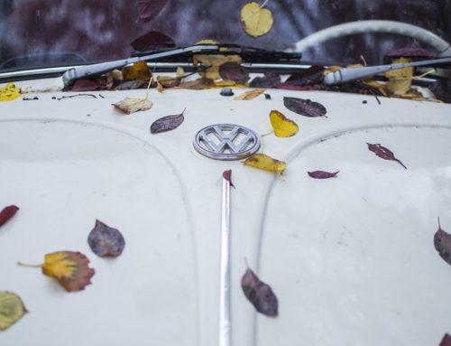 Llega el otoño, prepara tu vehículo.